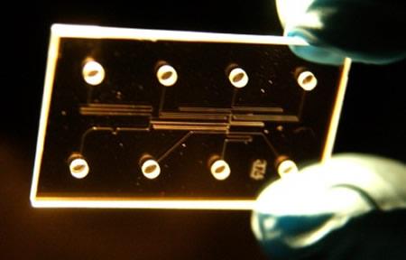 Chip que alberga un laboratorio - Imagen de radio.weblogs.com