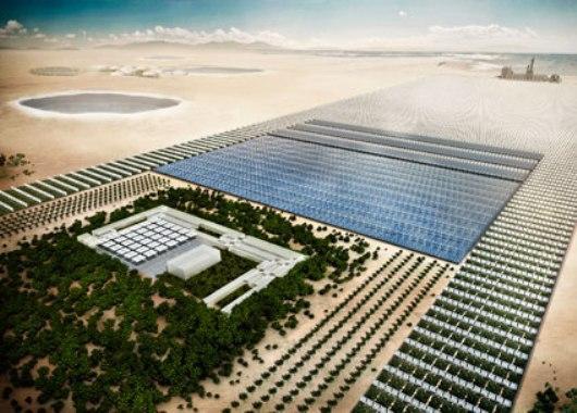 Proyecto Bosque de Sahara