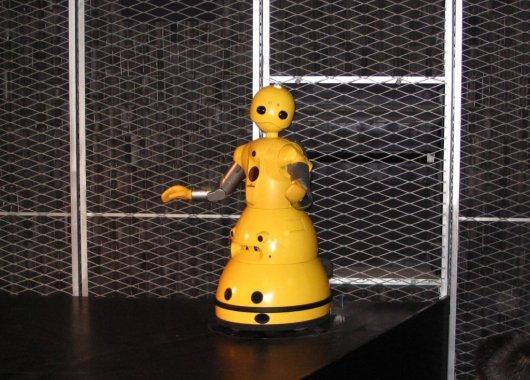 Robot Wakamaru