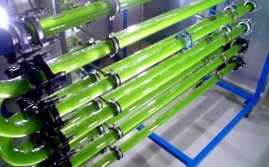 Proyecto Energreen