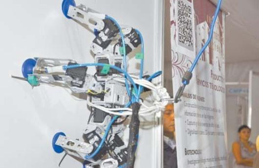 Robot Hex-piderix