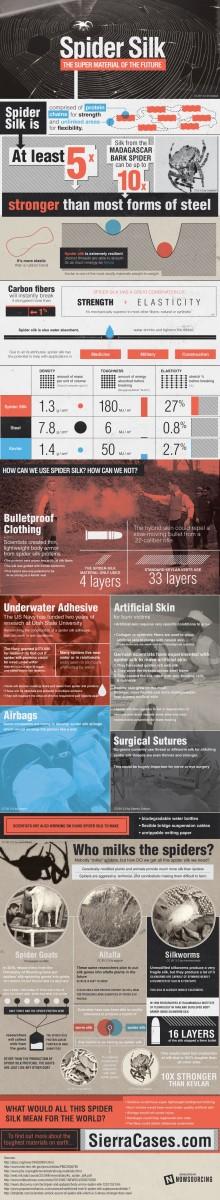 Spider Silk Infographic