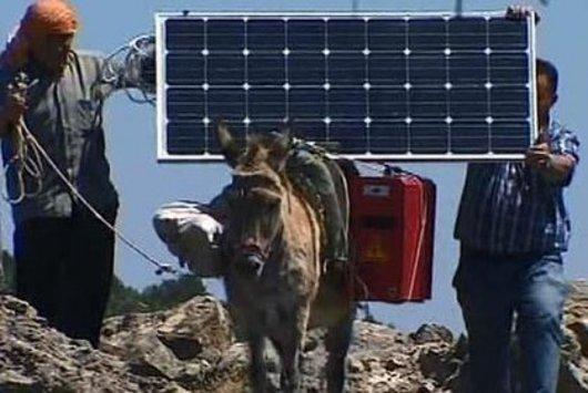 Burro con celda solar