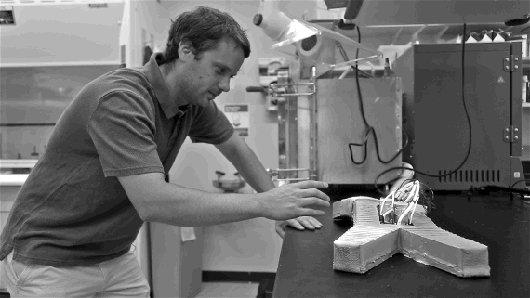 Robot invencible desarrollado en Harvard
